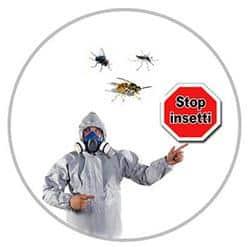 disinfestazione insetti Roma con 100Mani srl