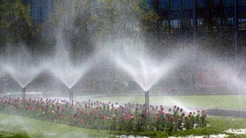 impianti di irrigazione roma: foto di un impianto