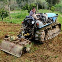 Lavorazione del terreno agricolo: 100Mani srl si occupa di fresatura, trebbiatura, aratura, semina cereali e molto altro