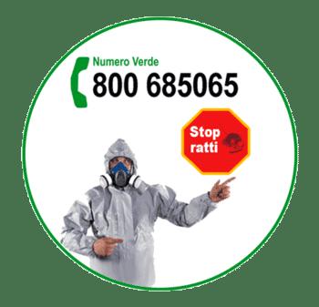 derattizzazione ratti roma: stop ratti con 100Mani srl
