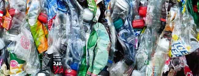 smaltimento plastica Roma: foto bottiglie di plastica
