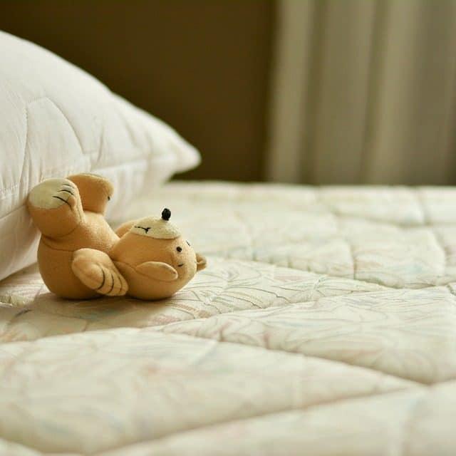 Disinfestazione acari a roma stop allergie con 100mani srl - Acari nel letto ...