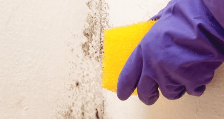 Come pulire i muri di casa