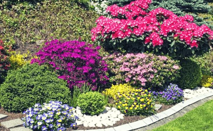 Idee per aiuole personalizzare il proprio giardino for Giardini e aiuole