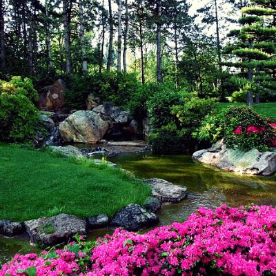Progettazione giardini roma scegli i giardini ornamentali for Giardini ornamentali